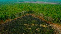 Deforestación en Amazonía Peruana
