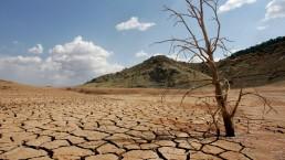 Sequías. Efectos del cambio climático