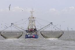 alt=Difícil frenar la pesca extranjera en la Zona Económica Exclusiva de Argentina – barco de pesca