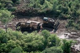Desmontes en Salta. Se hizo público un informe sobre diferentes violaciones a la Ley de Bosques en la provincia.