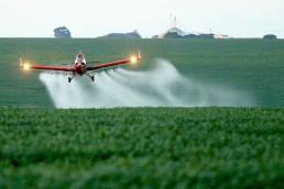 Quieren declarar emergencia sanitaria y ambiental en todo el país por los agrotoxicos.