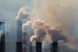 Crearon una web para ver los problemas ambientales de cada zona del planeta.