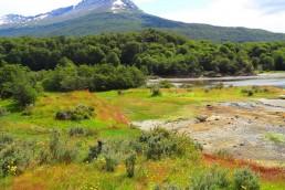 Pretenden fusionar el Parque Nacional Tierra del Fuego con el Parque Nacional Yendegaia, de Chile.