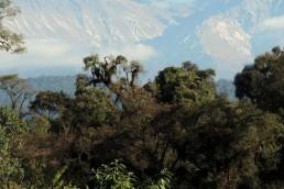 Por ley, en Tucumán se ha creado el nuevo Parque Nacional Aconquija