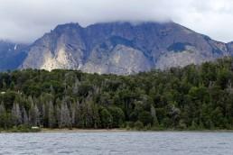 En el concurso por fondos del Plan Nacional de Restauración de Bosques Nativos, INTA ganó cuatro proyectos
