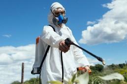 Fallo histórico contra el glifosato: Monsanto condenado en un juicio por cáncer