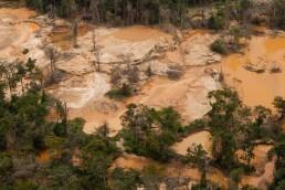Pérdida de bosques en la Amazonía venezolana
