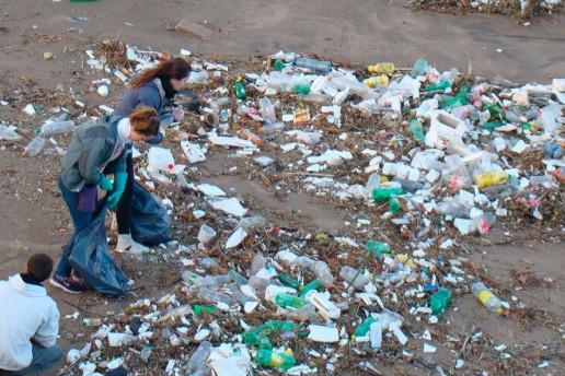 Fundación Vida Silvestre convocó a limpiar las playas de la localidad de Mar de Cobo